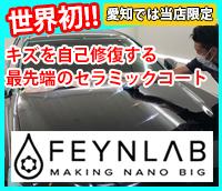 FEYNLAB(自己修復型)